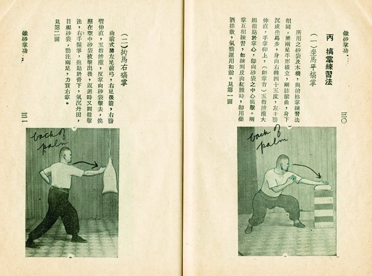 Bruce Lee Martial Arts Book